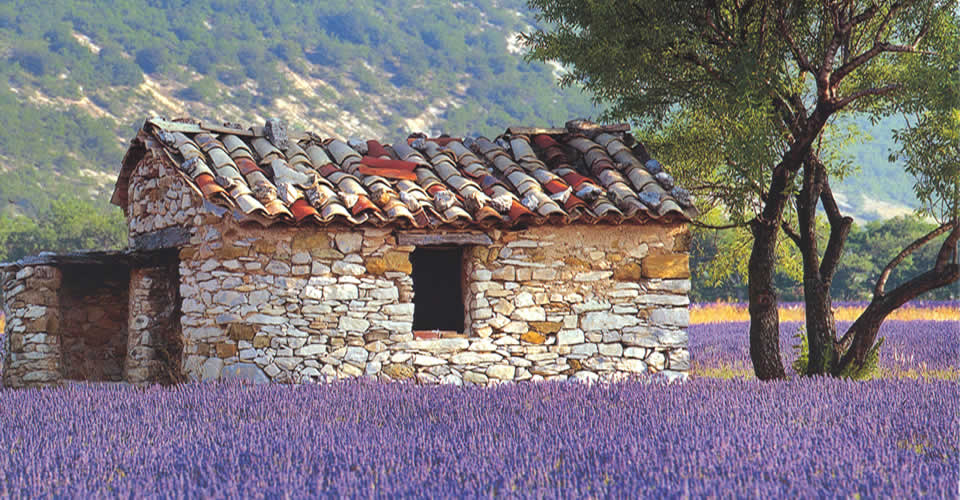 Enchanted corners of the Luberon